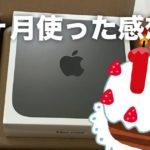 Mac mini (2018)を使い始めて10ヶ月。その使用感がコチラ
